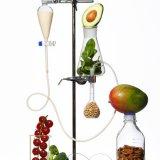 ELLE | Почему все диеты вредны?